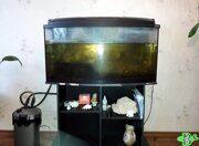 Аквариум AquaEL панорама (180 литров) до чистки
